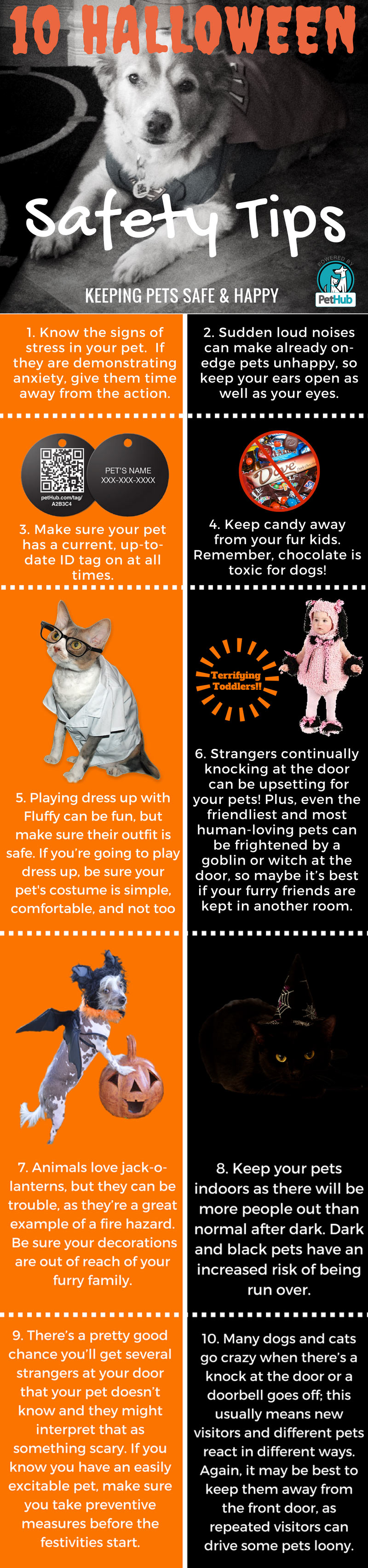 10 Halloween Safety Tips Infographic