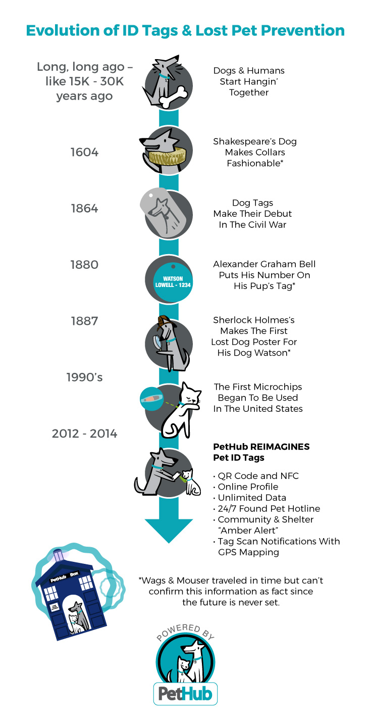 evolution of id tags and lost pet prevention timeline infographic