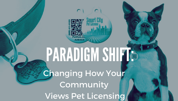 paradigm shift title image with blue boston terrier with pethub tag