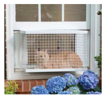Cat box window guard