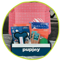 PupJoy At Home Essential Gift