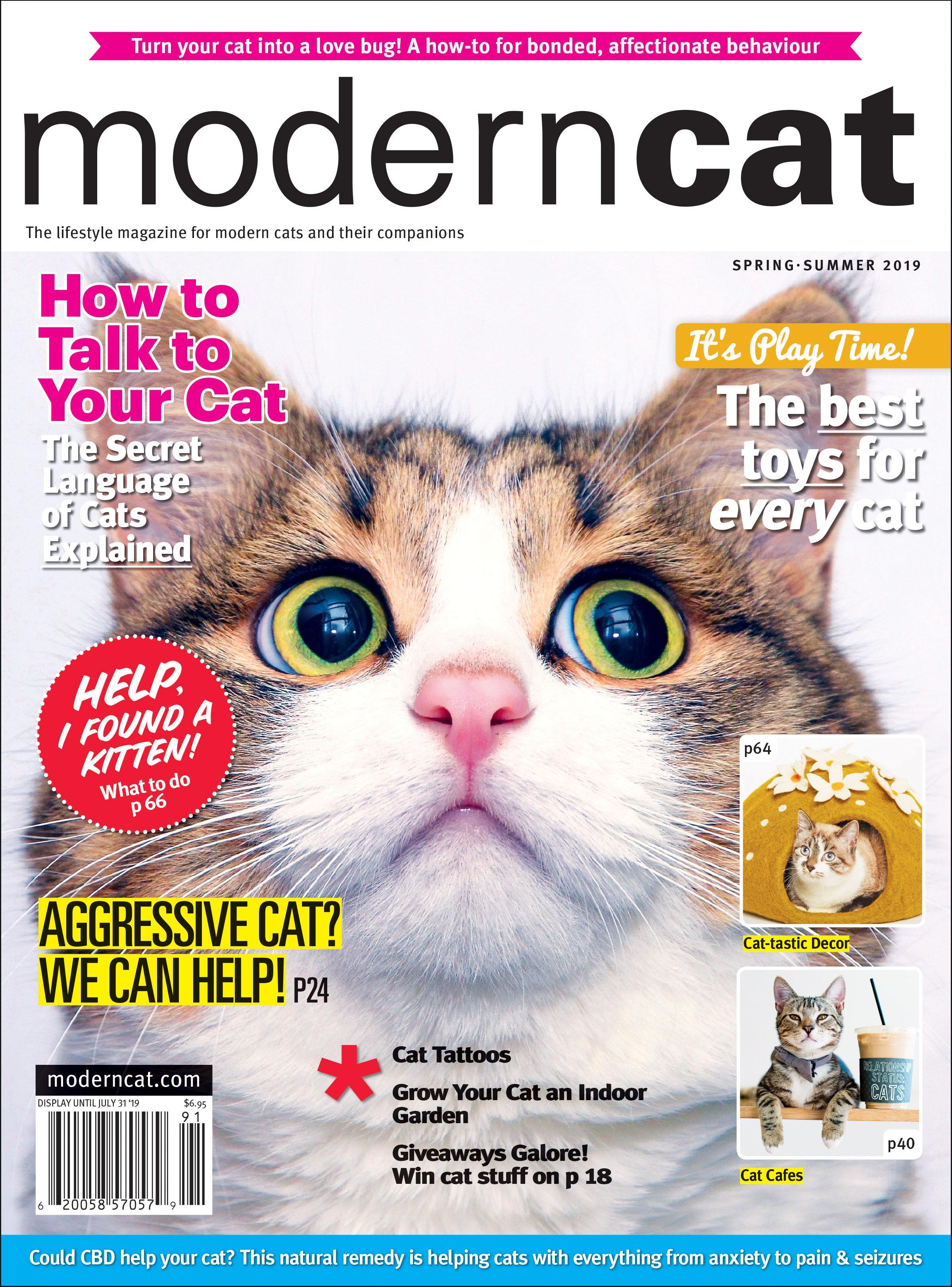 Modern Cat Magazine Save 20 On 2yr Subscription Pethub